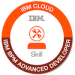 -IBM Business Process Manager - Advanced Developer-