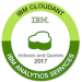 -IBM Cloudant Indexes & Queries-